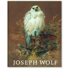Joseph Wolf (1820–1899) – Tiermaler · Animal Painter